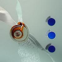 Snails transparent glass textures