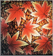 Orange maple leaves texture