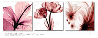 Flower paintings material