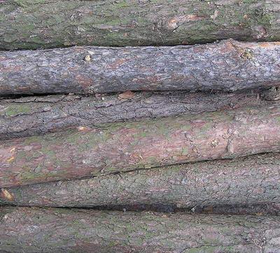 Classic wood 11-6