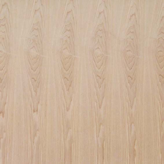 Classicals Collections Of Woods  010(TIF File Types)