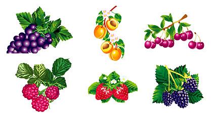 Textura de fruta