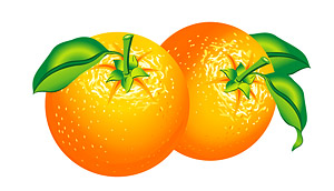 สีส้มเวกเตอร์