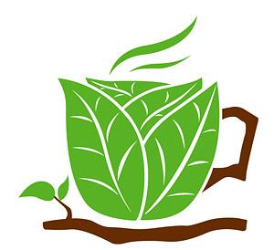 Hojas de la taza de café