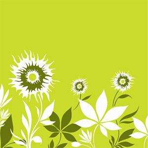 Fleurs et feuilles
