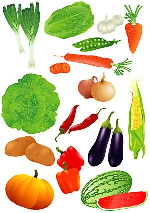 ผักและผลไม้ของเวกเตอร์