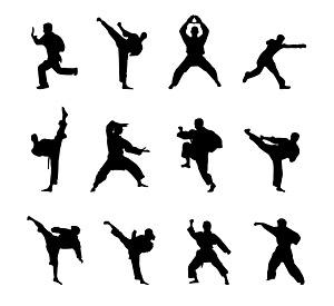 Material de las cifras de Kung Fu