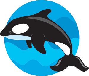 กระโดดเวกเตอร์ปลาวาฬ