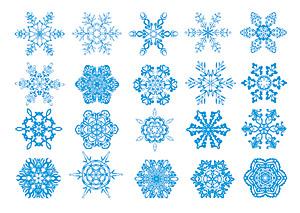 Número de copos de nieve exquisitas Vector
