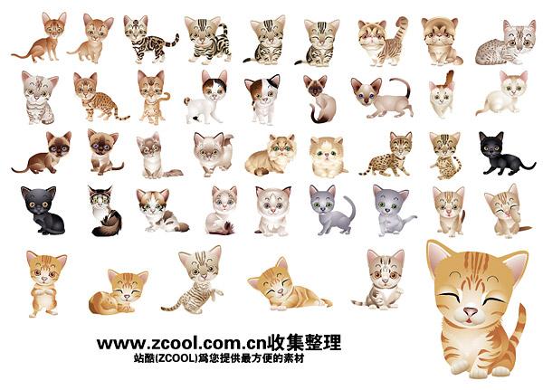 schöne kleine Katze-Vektor-material