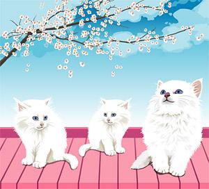 Material de vector de gato blanco