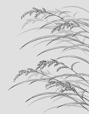 บรรทัดวาดดอกไม้-23