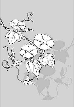 บรรทัดวาดดอกไม้-9