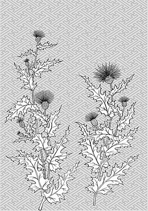 บรรทัดวาดดอกไม้ -10