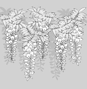 花-12 の線の描画