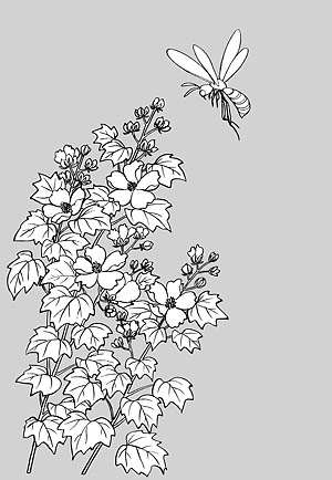 Desenho de linha das flores -15