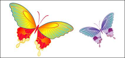 Mariposa material de vectores