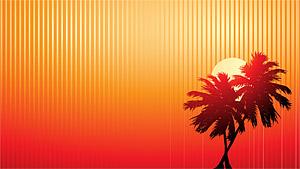 Matériel vidéo de vecteur du coucher du soleil de noix de coco