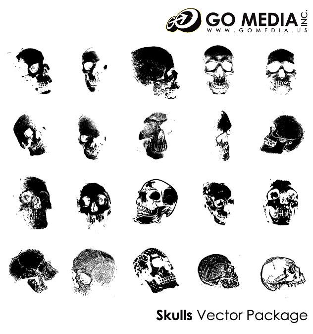 Allez Media produit vectoriel matériel - crâne humain