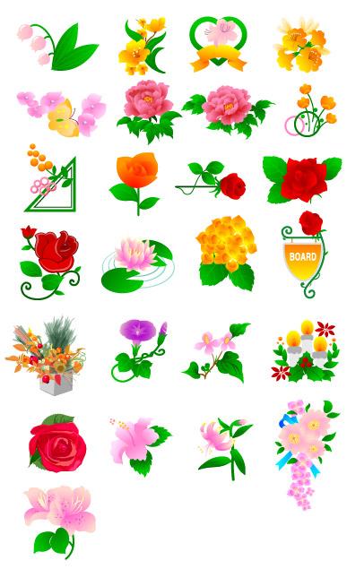 Pfingstrose Blumen, Rosen, Tulpen und andere Blumen