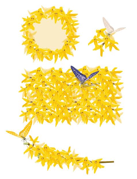 黄色の黄金の花と蝶