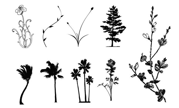 木、花、籐ベクトル ケース素材