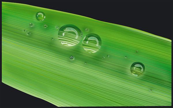 el agua en el material de vectores-1 hojas