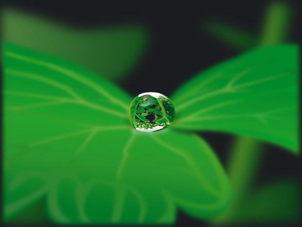 葉ベクトルの材料 2 を水します。