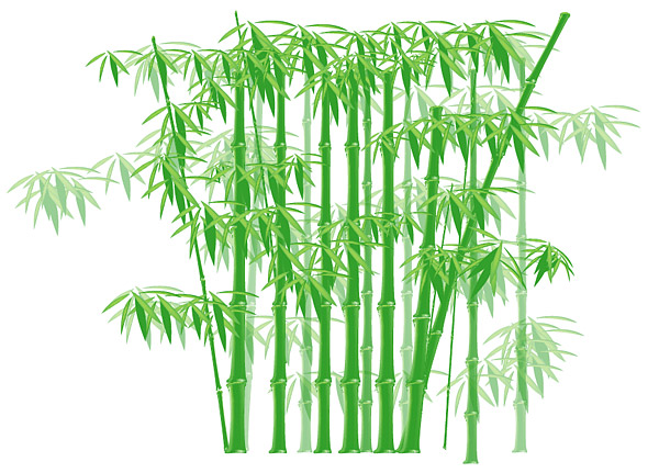 Зеленый бамбук векторного материала