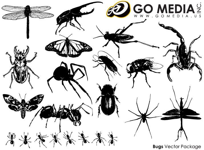 Vaya medios material producido vector - insecto