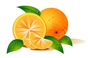 Naranjas de vectores de material