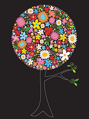 Fleurs colorées des arbres