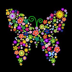 Fleurs colorées du papillon