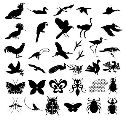 材料の何百もの写真の自然の要素のベクトルします。