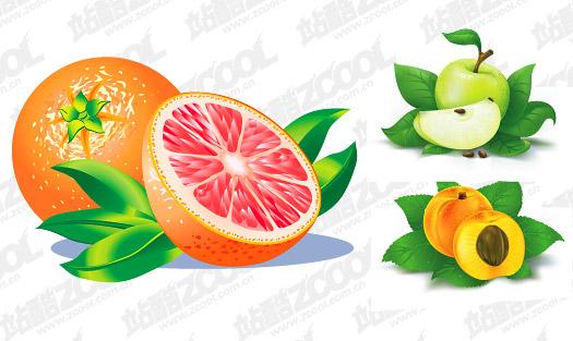 Oranges, pommes, matériel de pêchers vecteur