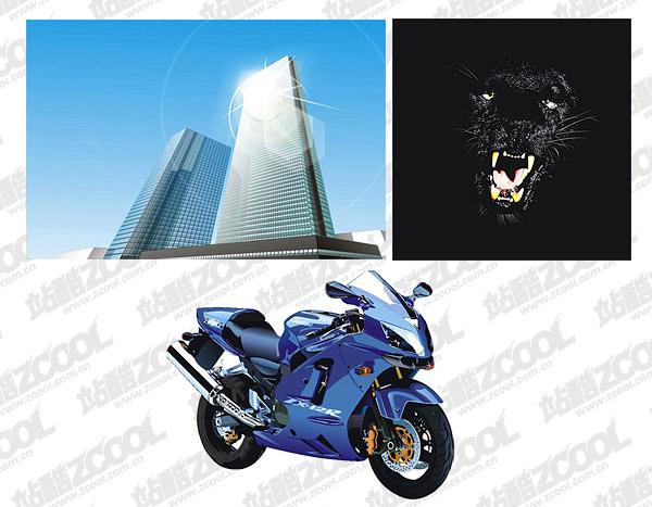 Edificios altos, panteras y motocicletas material de vectores