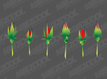 Vector Rose Bud