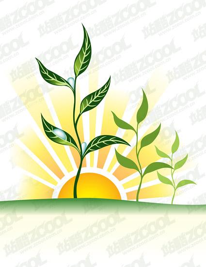 Vektor-Sonnenuntergang Wasser-Pflanze-material