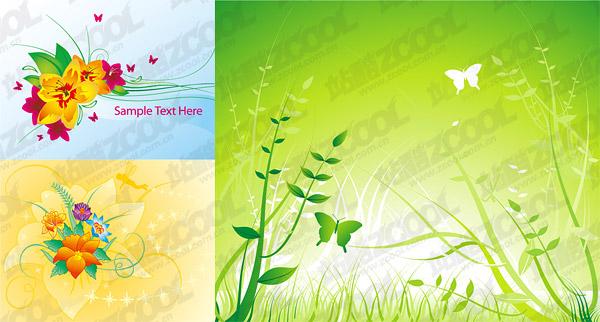 Бабочка цветы растений