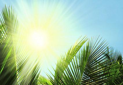 el material de imagen de sol