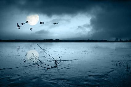 Nacht des Sees