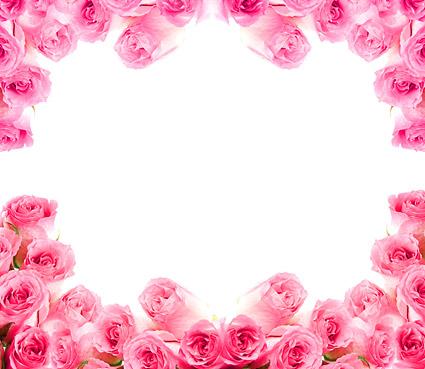 Imagen de rosas rosada