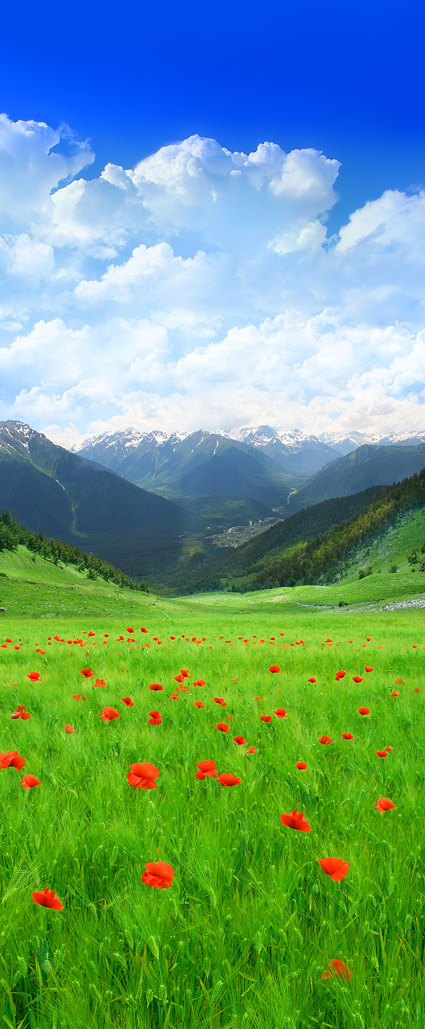 아름 다운 시골 풍경 그림 자료