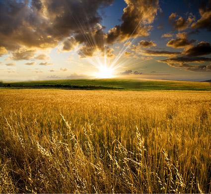 Le soir du matériel photo de terres agricoles