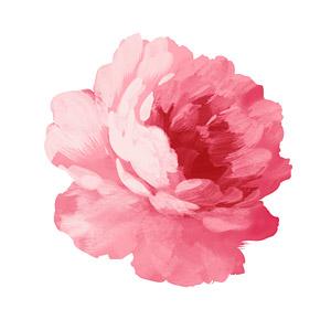 Flores pintados a mano por capas de material psd-4