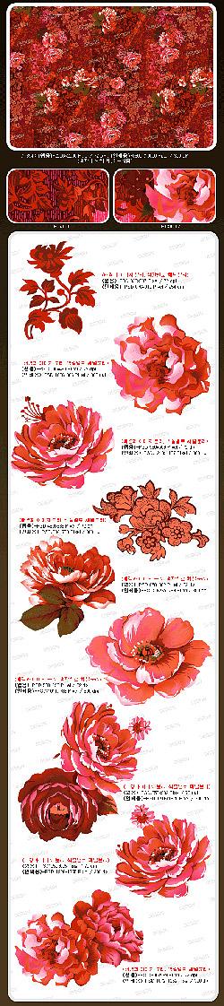 Material de psd de flores rosas
