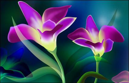 Tema Super muy flor-2