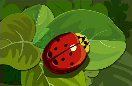 녹색 잎에 무당벌레