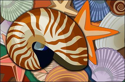 Kerang, kerang, starfish psd berlapis bahan