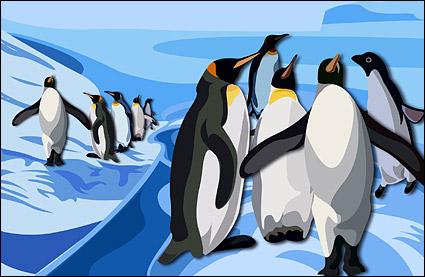 Hermosos pingüinos